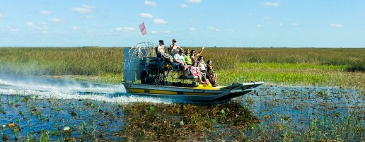 miami everglades airboat, miami airboat tours, airboat tours near me