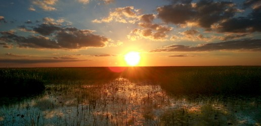 Airboat ride, Everglades sunset, Miami Eco tours