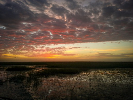 Everglades airboat sunset