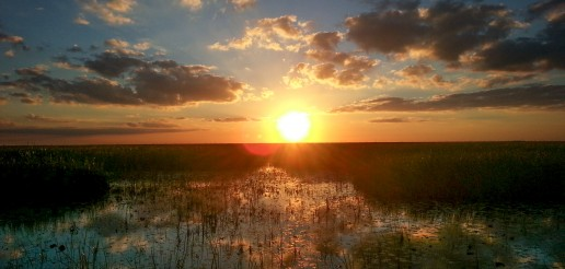 Everglades sunset, Miami airboat tours