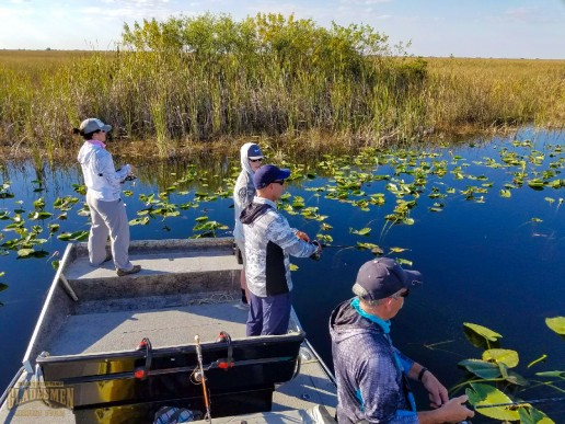 everglades, bass fishing, guide services, bass fishing charter